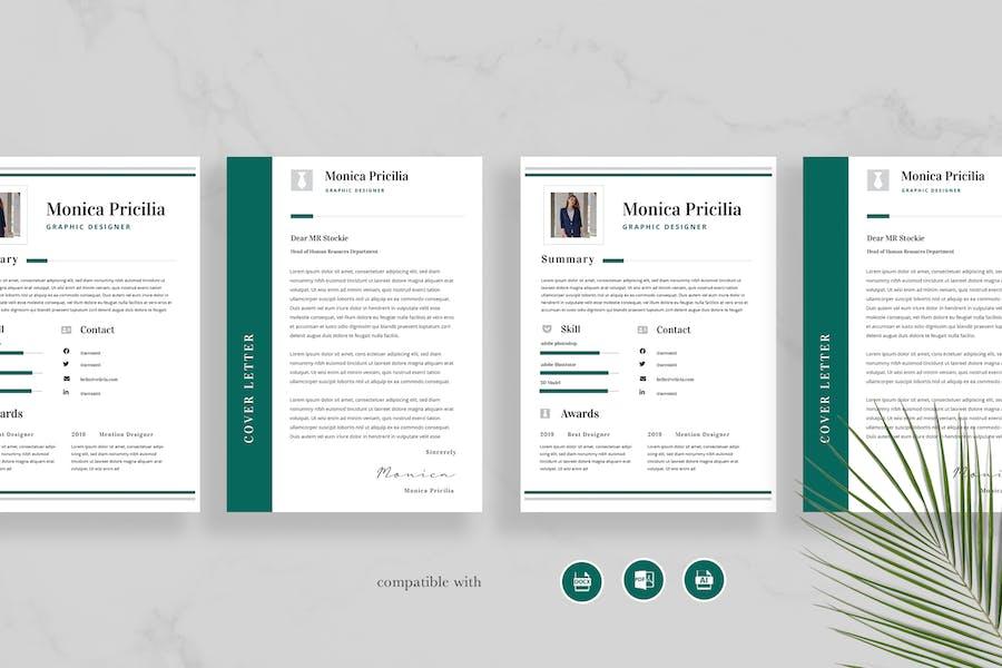 Professional Resume Vol 33