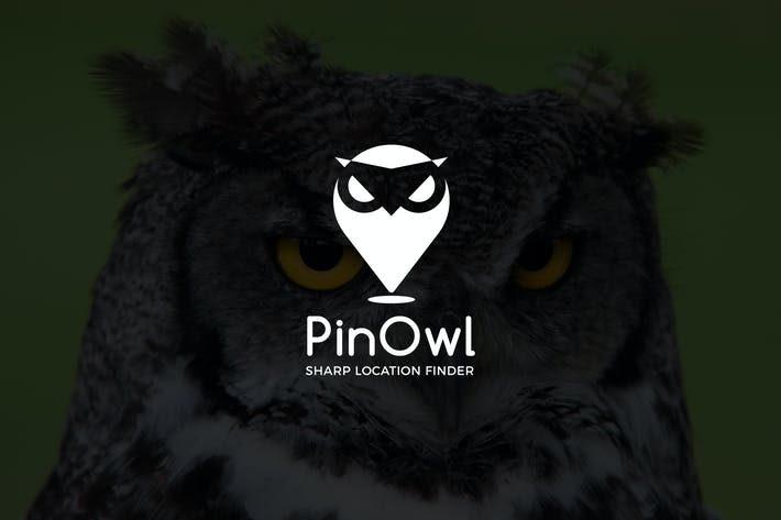 Thumbnail for PinOwl : Negative Space Location Pin Logo