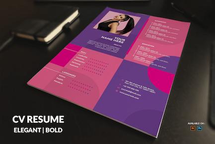 CV Resume Multicolor
