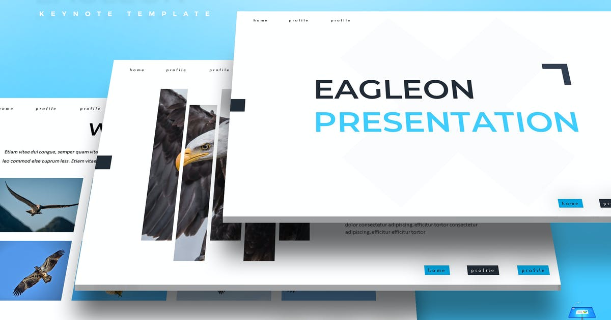 Download Eagleon - Keynote Template by aqrstudio