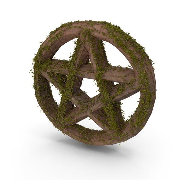 Stone With Ivy Pentagram