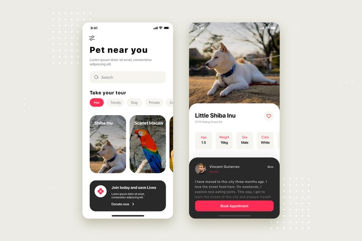 Thumbnail for Pet Mobile App UI Kit Template