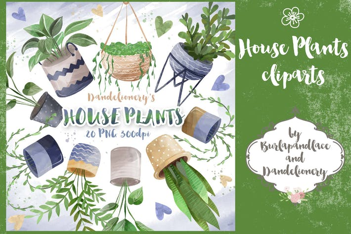 Thumbnail for House Plant cliparts