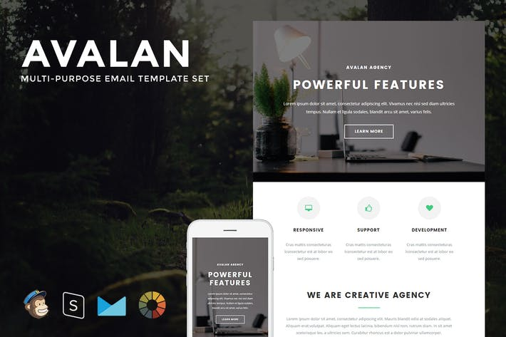 Thumbnail for Avalan - Responsive Email + StampReady Builder