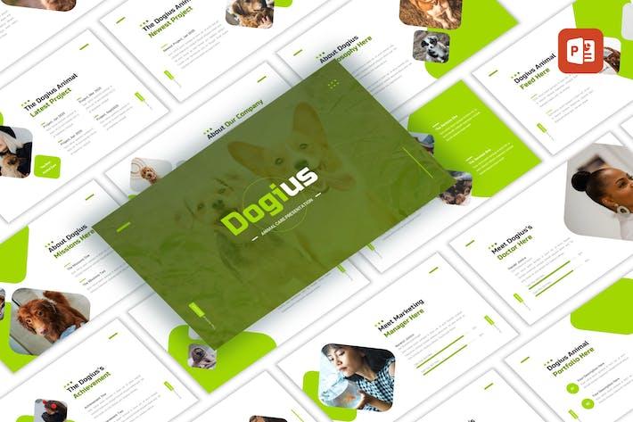 Dogius - Уход за животными PowerPoint Шаблон