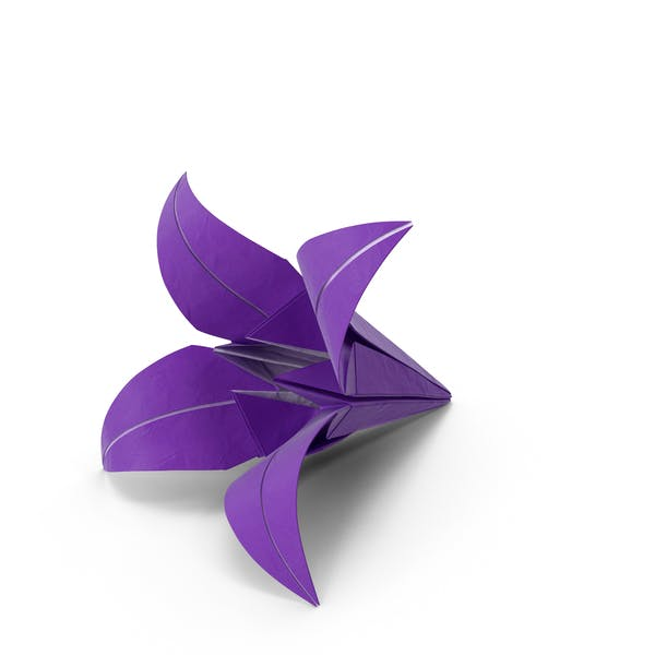 Cover Image for Origami Lily