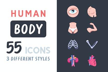 55 Human body icon set