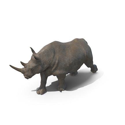 Rhino caminante