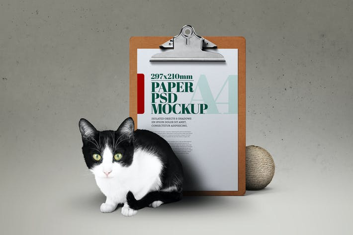 Thumbnail for Cat Mockup Clipboard