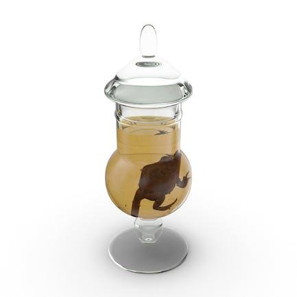 Frog Specimen Jar