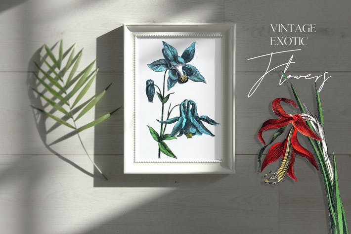 Thumbnail for Vintage exotic flowers - botanical set