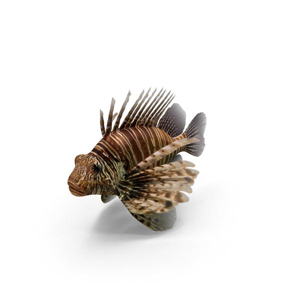 Thumbnail for Lionfish
