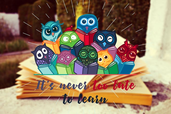 Thumbnail for Live And Learn With Owls