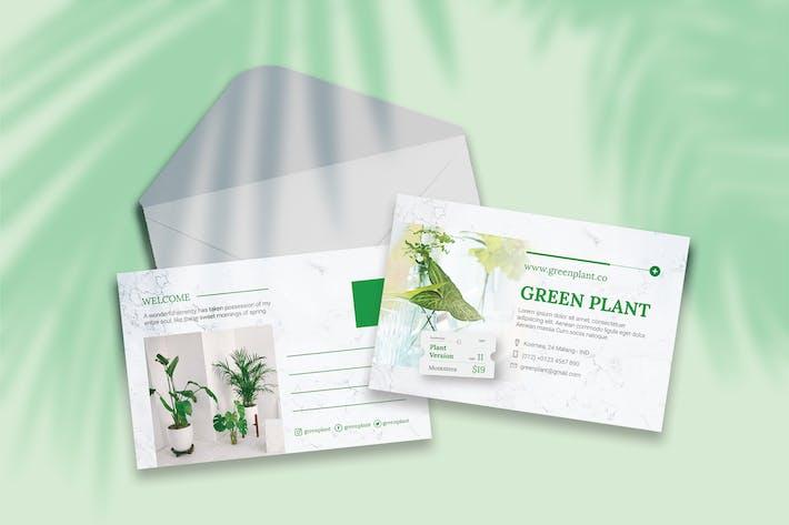 Thumbnail for Botanical Postcard