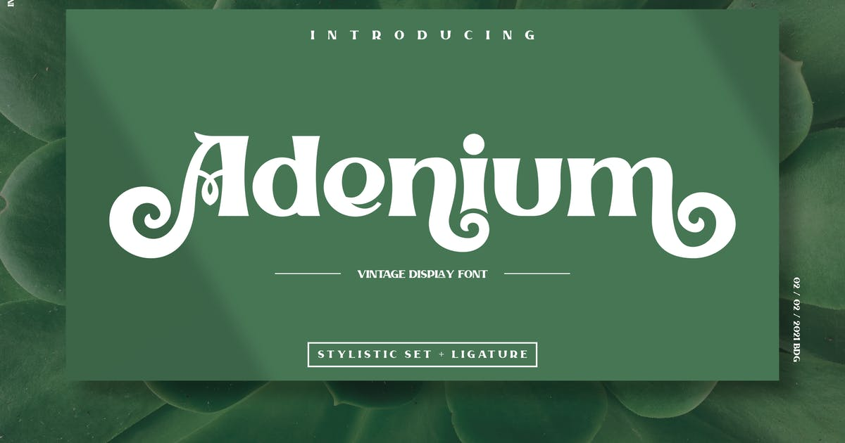 Download Adenium by inumocca