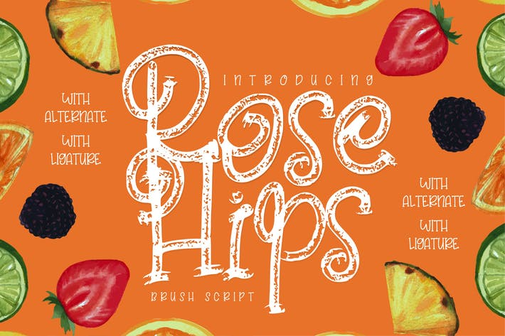 Thumbnail for Rose Hips | Decorative Fruit Font