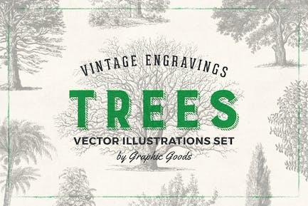 Trees - Kit de ilustración de grabado Vintage