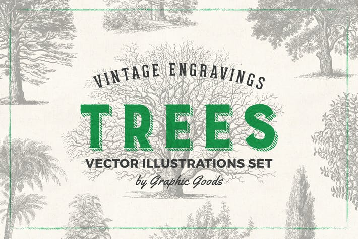 Trees – Vintage Engraving Illustration Set
