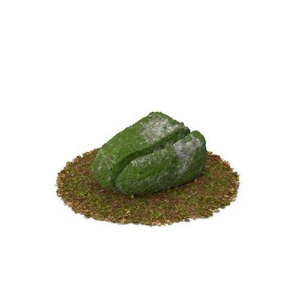 Moosfelsen