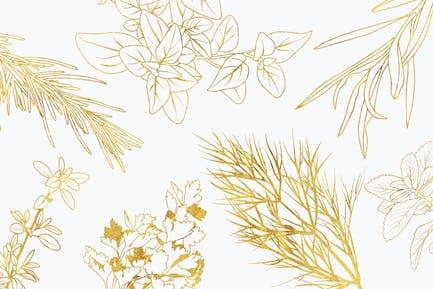 Vector Culinary Herbs Illustrations & Printables