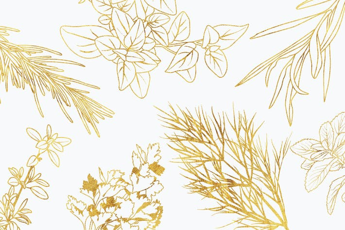 Thumbnail for Vector Culinary Herbs Illustrations & Printables