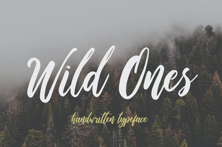 Thumbnail for Wild Ones
