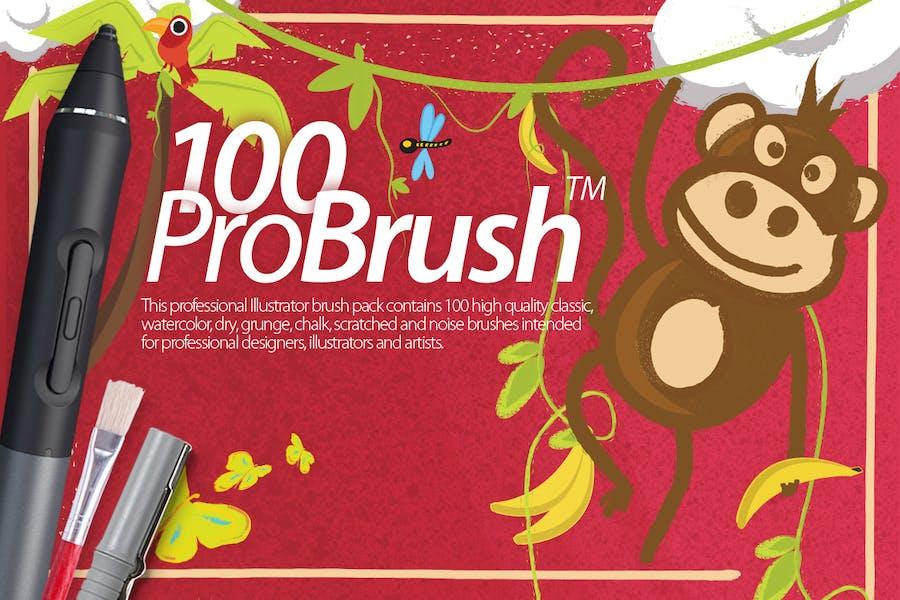 ProBrush 100