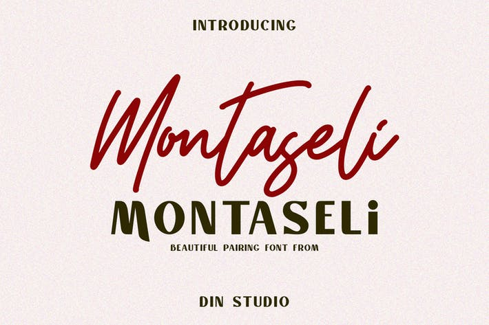 Thumbnail for Montaseli Font Duo Cover case Negro
