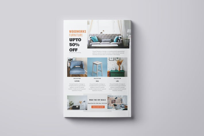 Thumbnail for Furniture Flyer - Promotional
