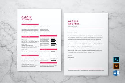 Professional Resume & Cover Letter #3