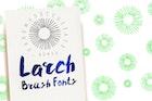 Larch Brush Font