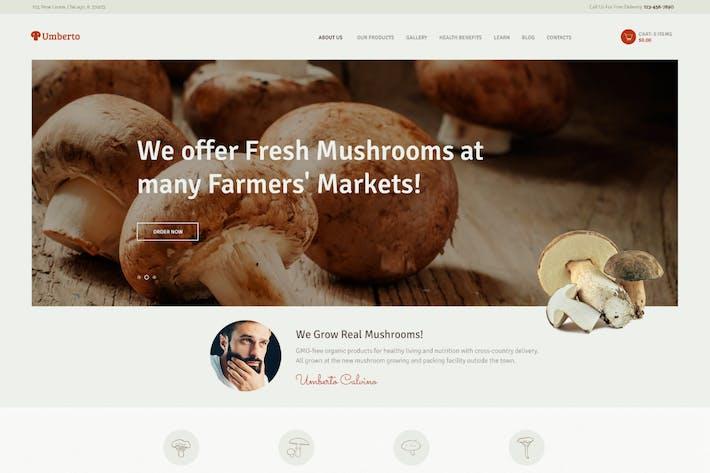 Thumbnail for Umberto - Mushroom Farm & Organic Products Store