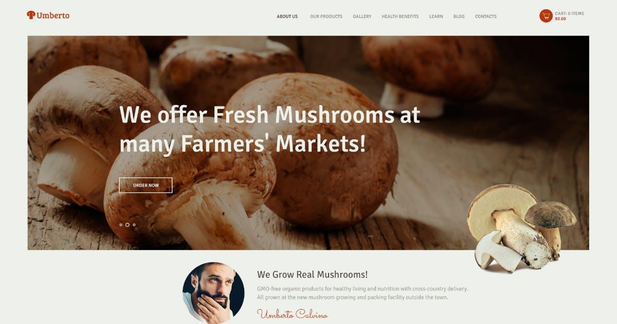 Download Umberto - Mushroom Farm & Organic Products Store by AncoraThemes