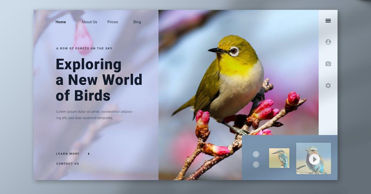 Download Birdnys Hero Header by karkunstudio