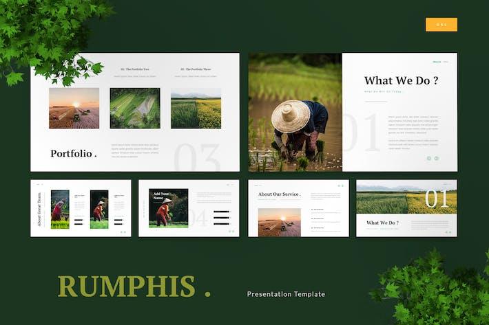 Thumbnail for Rumphis - Farming Agriculture Google Slides