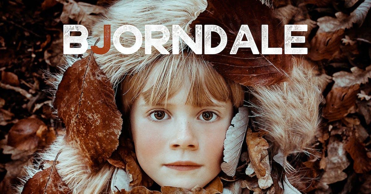 Download Bjorndale Rustic Lightroom Presets by Presetrain