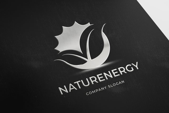 Thumbnail for NaturEnergy