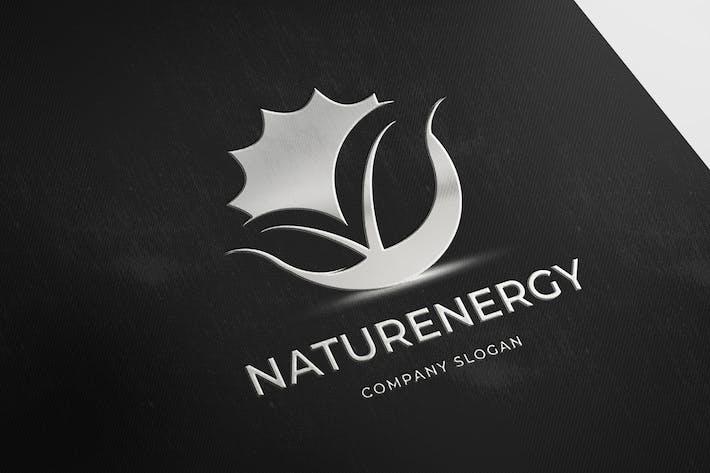 Thumbnail for NaturEnergy
