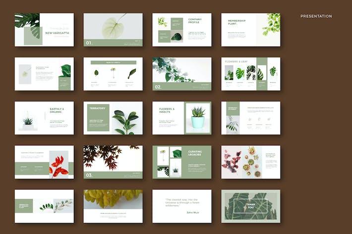 Thumbnail for Новая Вагиратта - Презентация