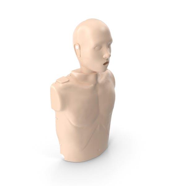 Half Body First Aid Training Dummy