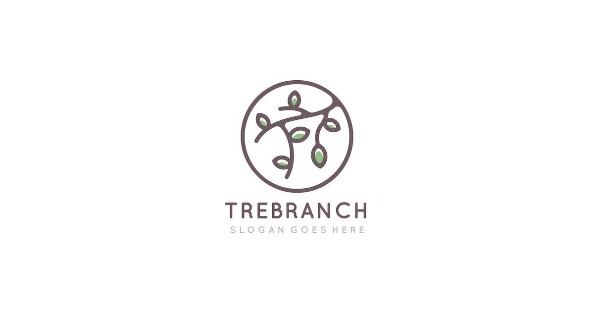 Download Tree Branch Logo by 3ab2ou