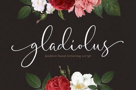 Gladiolo - Caligrafía moderna
