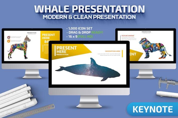 Шаблон презентации Keynote кита