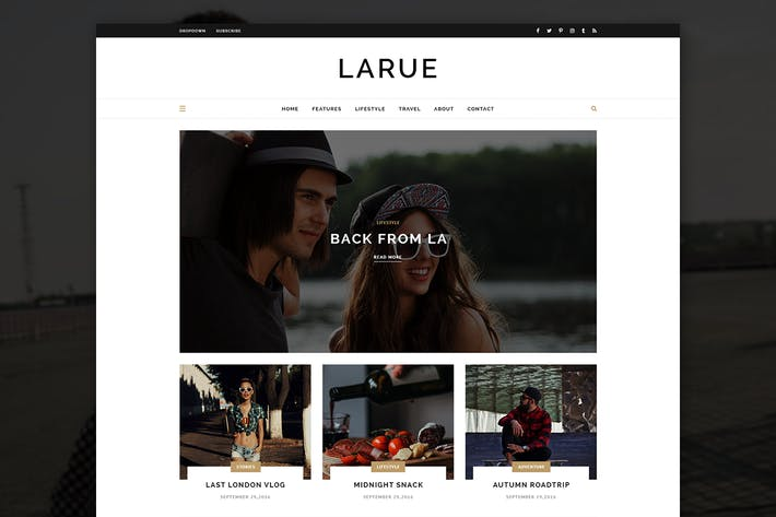Thumbnail for Larue - Stylish Blog