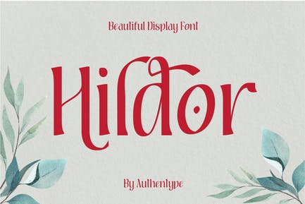 Hildor Beautiful Display Font