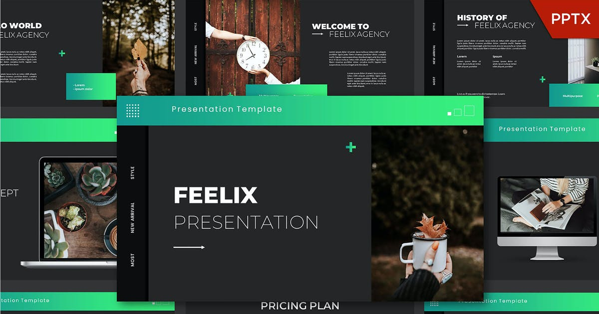 Download Feelix Powerpoint Template by axelartstudio