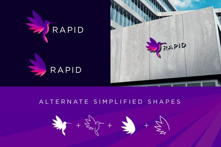 Hummingbird Logo Complete Package