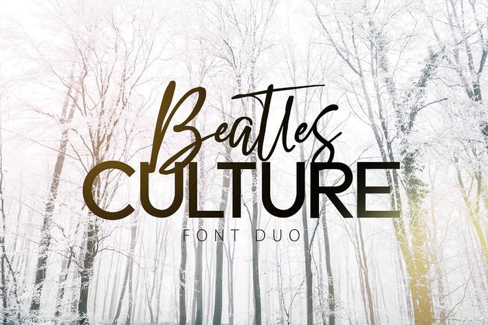 BEATLES CULTURE - Font Duo