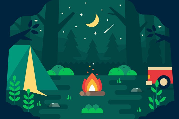 Campfire in The Forest at Night