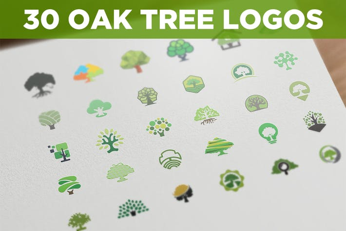 Thumbnail for 30 Oak Tree Logos